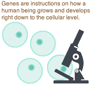 genetics cellular level